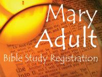 bible study button