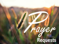 Prayer requests logo